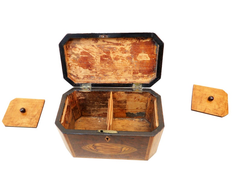 Georgian 18th Century Burr Yew Wood Octagonal Tea Caddy In Good Condition For Sale In Bedfordshire, GB