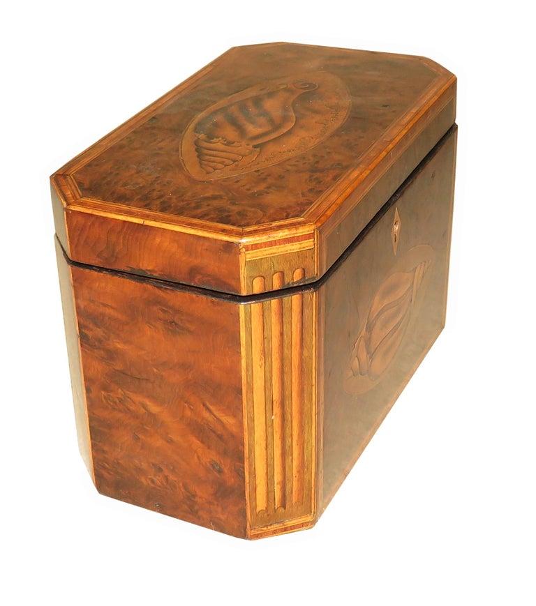 Mahogany Georgian 18th Century Burr Yew Wood Octagonal Tea Caddy For Sale