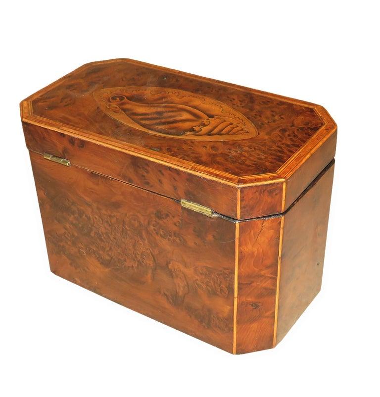 Georgian 18th Century Burr Yew Wood Octagonal Tea Caddy For Sale 1