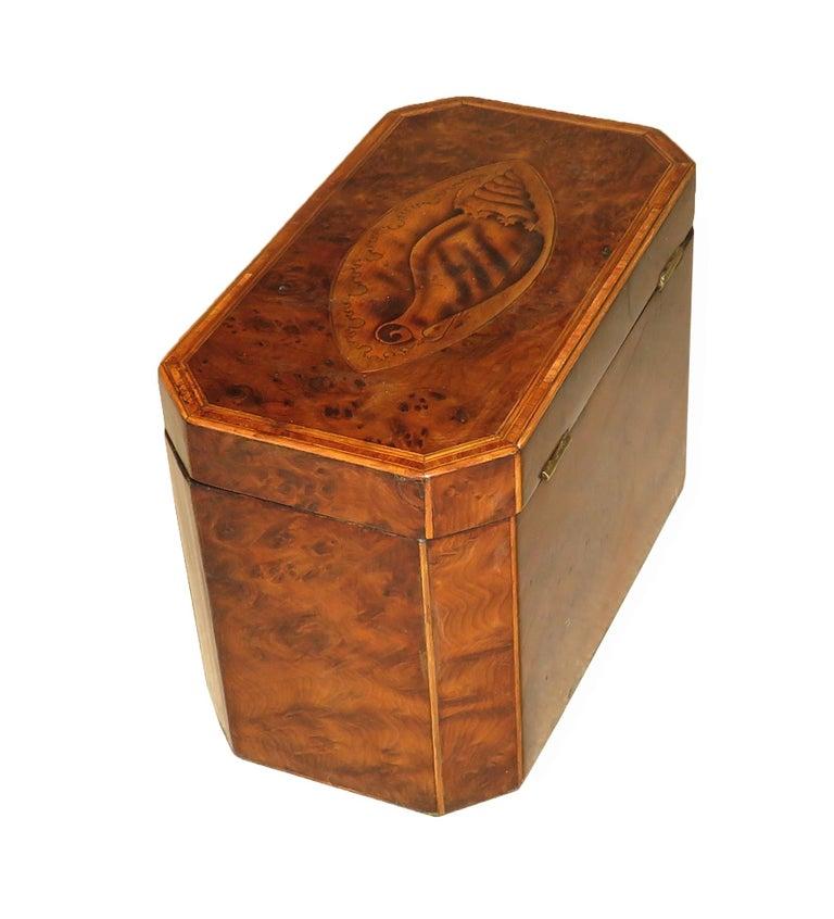 Georgian 18th Century Burr Yew Wood Octagonal Tea Caddy For Sale 2