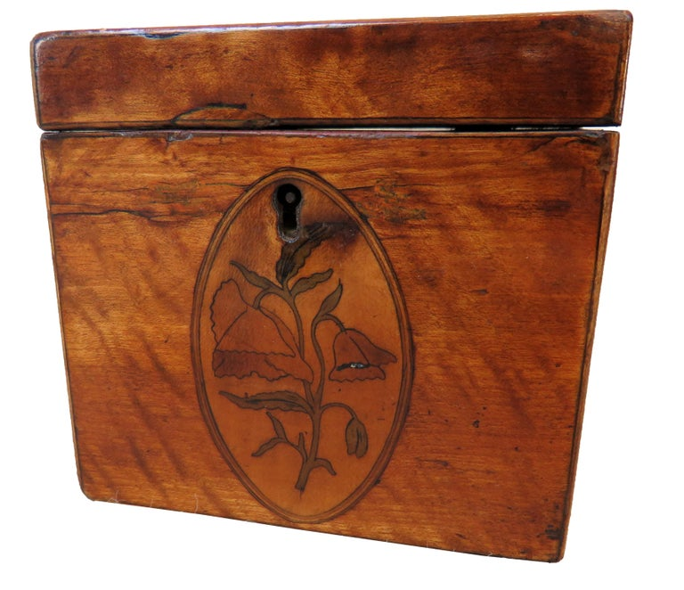 Georgian 18th Century Satinwood Antique Tea Caddy In Good Condition For Sale In Bedfordshire, GB