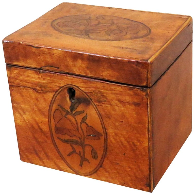 Georgian 18th Century Satinwood Antique Tea Caddy