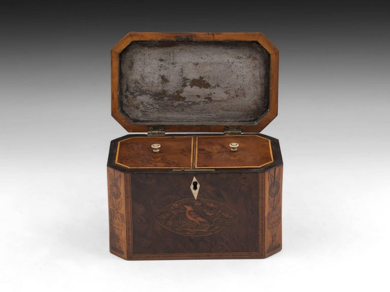 18th Century and Earlier Georgian Antique Burr Yew Conch Shell Tea Caddy, 18th Century For Sale