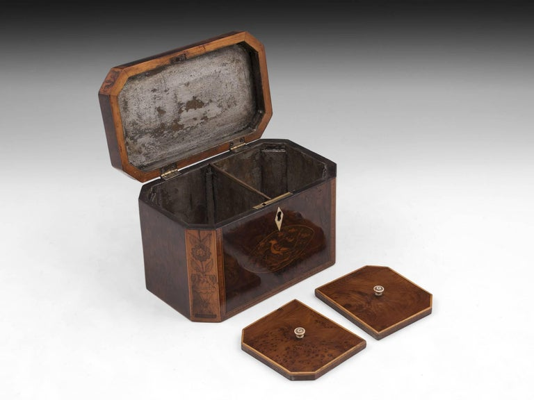 Georgian Antique Burr Yew Conch Shell Tea Caddy, 18th Century For Sale 3