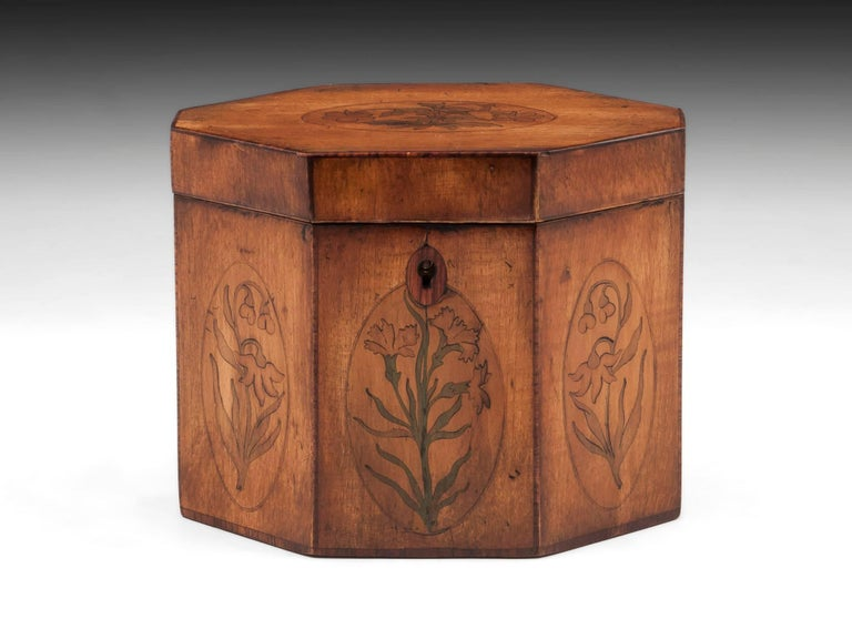 Antique harewood octagonal tea caddy with tulipwood edging and inlaid oval medallions containing tea plants.   The interior of this charming Georgian harewood tea caddy features a mahogany floating lid with brass handle, still has traces of its