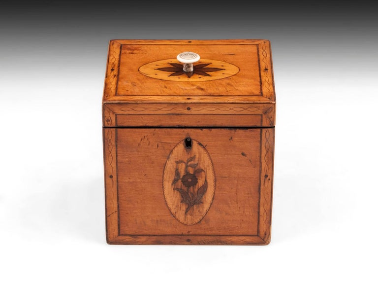 Antique Satinwood tea caddy with decorative engraved penwork borders and floral inlays on all sides. With turned bone handle to the lid.   The Georgian single tea caddy interior features a matched bone handle mahogany lid and contains 95% of its