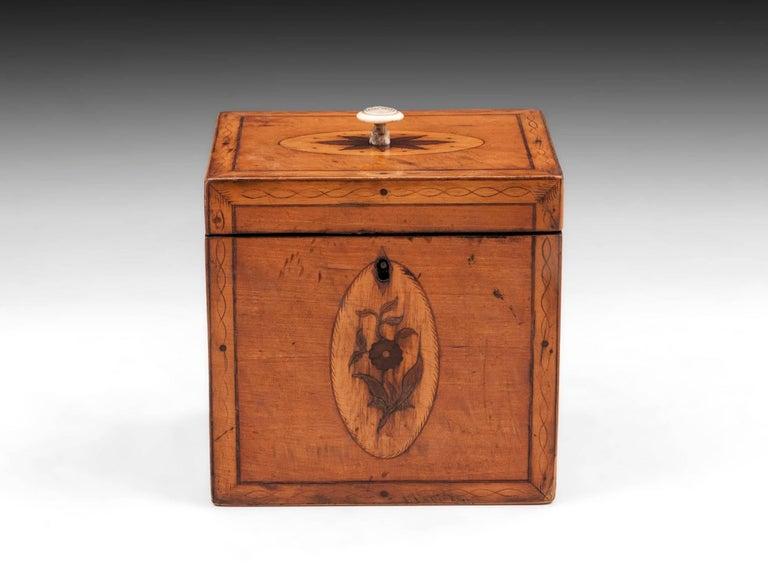 British Georgian Antique Single Satinwood Tea Caddy, 18th Century For Sale