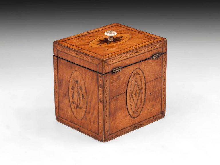 18th Century and Earlier Georgian Antique Single Satinwood Tea Caddy, 18th Century For Sale