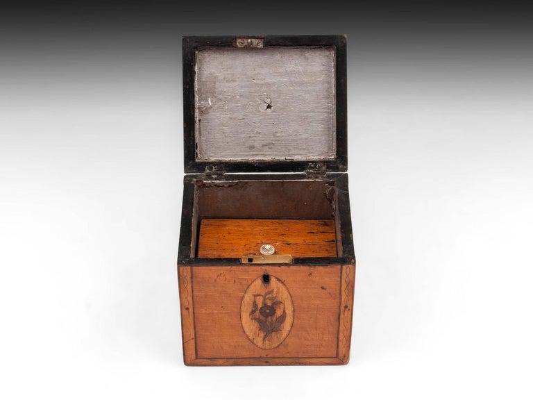 Bone Georgian Antique Single Satinwood Tea Caddy, 18th Century For Sale