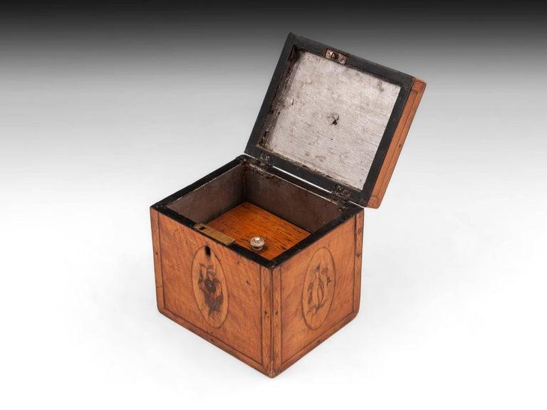 Georgian Antique Single Satinwood Tea Caddy, 18th Century For Sale 1