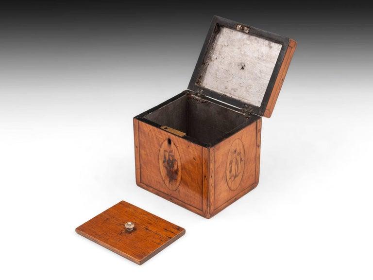 Georgian Antique Single Satinwood Tea Caddy, 18th Century For Sale 2
