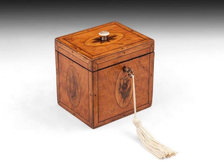 Georgian Antique Single Satinwood Tea Caddy, 18th Century For Sale 3
