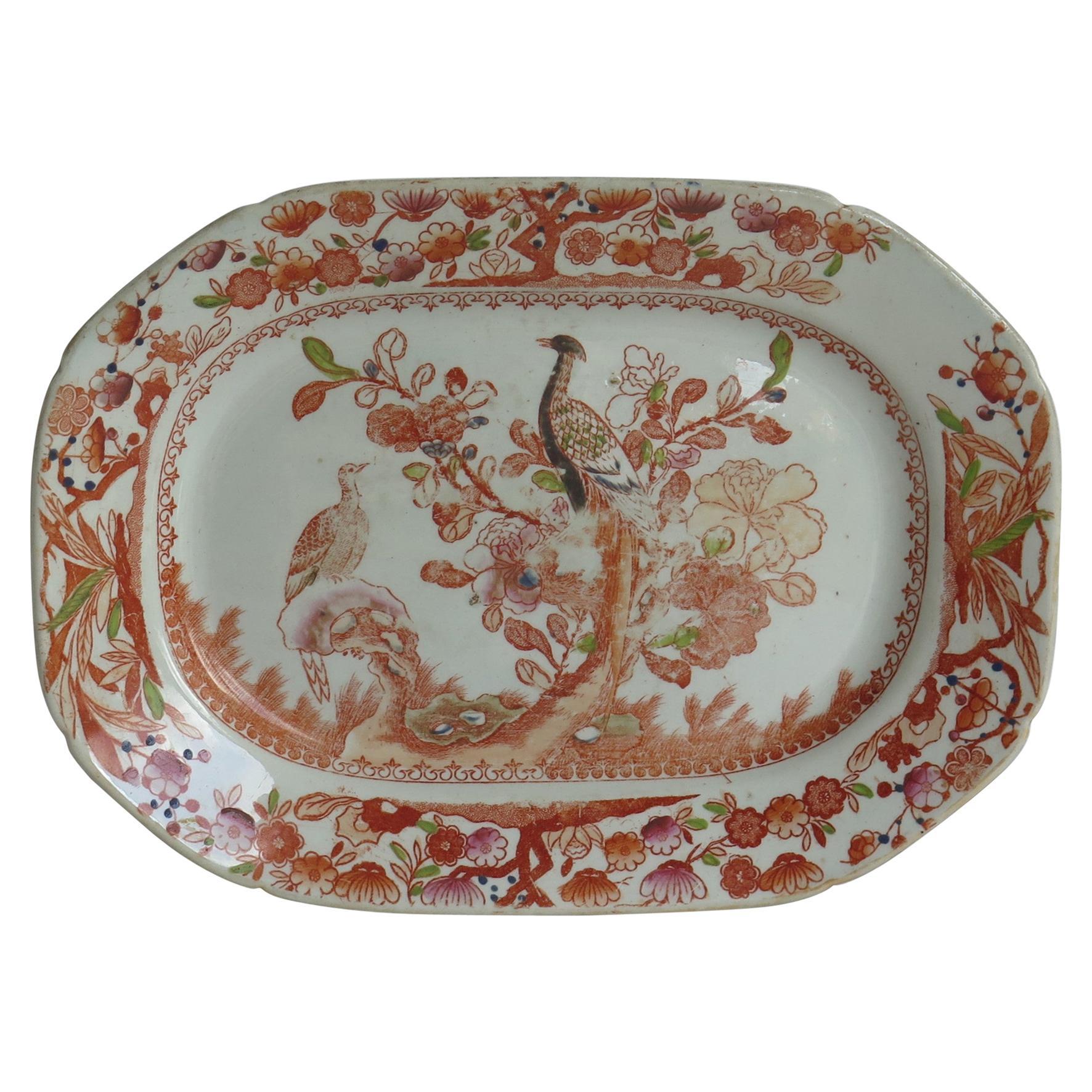 Georgian Mason's Ironstone Platter or Plate in Oriental Pheasant Ptn, circa 1818