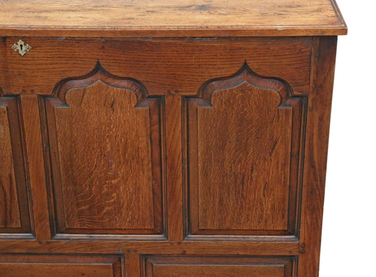 Georgian Oak Coffer or Mule Chest 19th Century For Sale 3