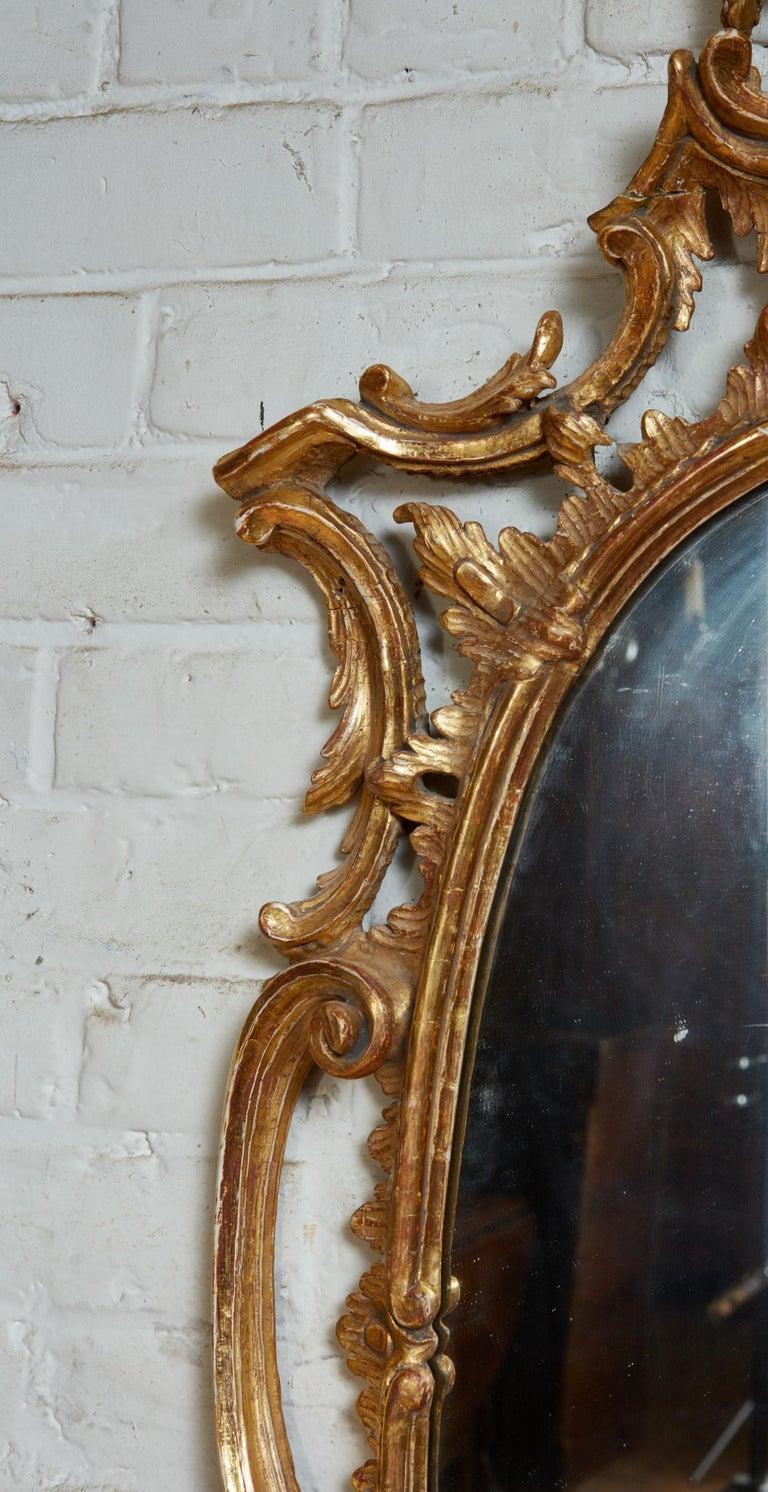 Gilt Georgian Oval Rococo Mirror For Sale
