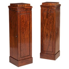 Georgian Pair of Mahogany Pedestal Cupboards with Shelved Interiors