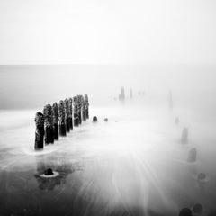 Asparagus Time, Rügen, Germany, minimalist black and white landscapes prints