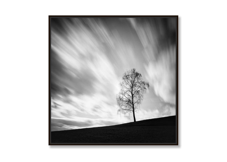 Black Birch, Austria - Black and White long exposure fine art film photography - Contemporary Photograph by Gerald Berghammer, Ina Forstinger