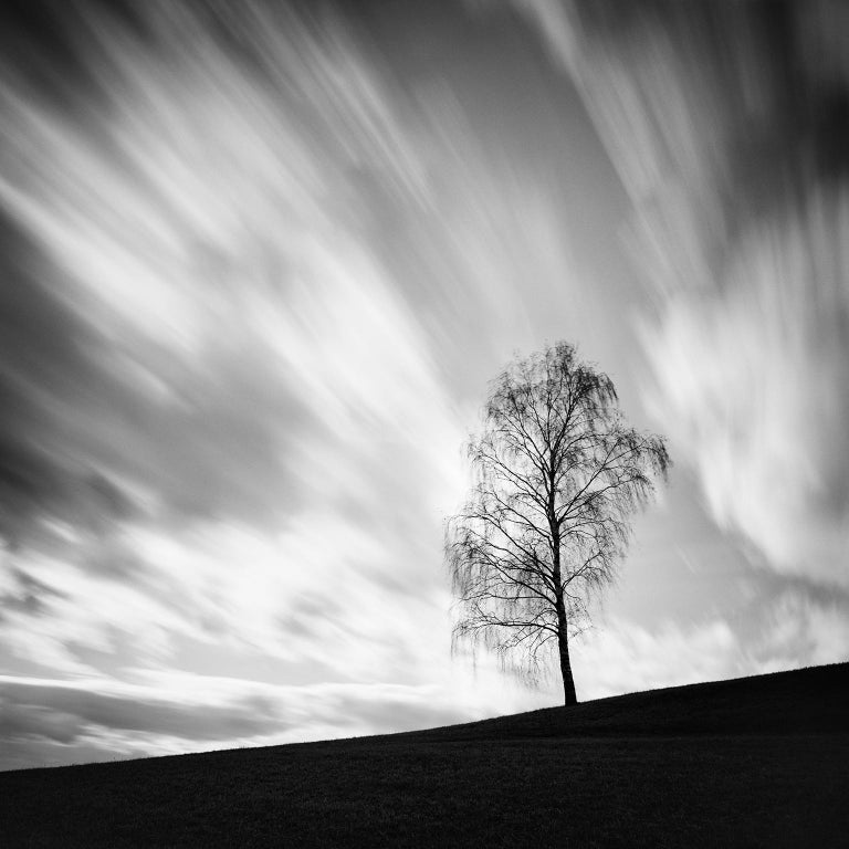 Gerald Berghammer, Ina Forstinger Landscape Photograph - Black Birch, Austria - Black and White long exposure fine art film photography