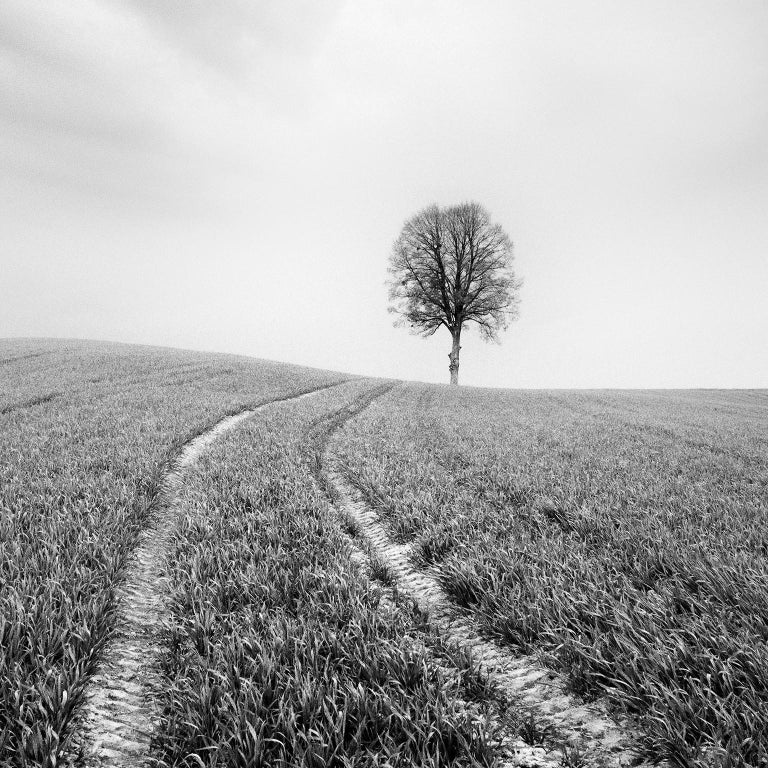 Farmland Study #3, Austria - Black and White fine art long exposure photography - Photograph by Gerald Berghammer, Ina Forstinger