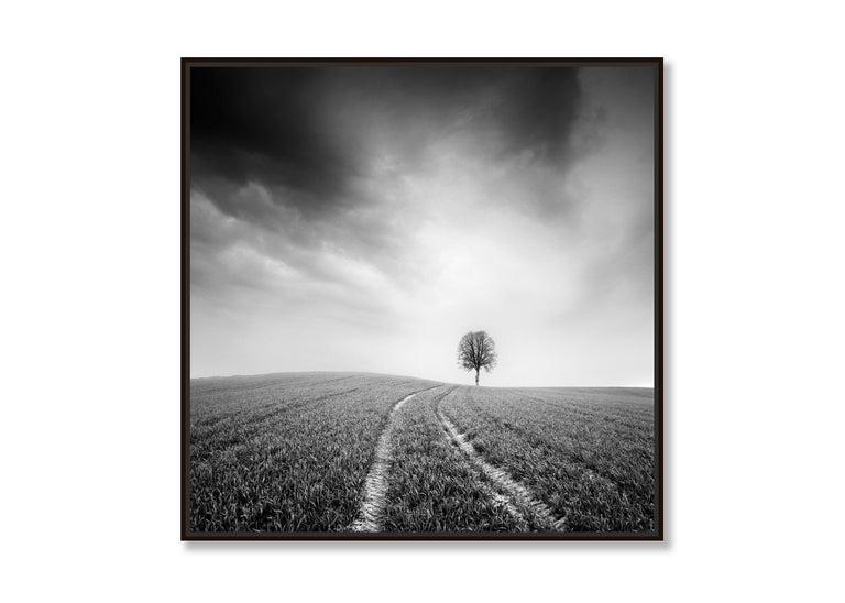 Farmland Study #3, Austria - Black and White fine art long exposure photography - Contemporary Photograph by Gerald Berghammer, Ina Forstinger