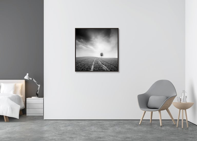 Farmland Study #3, Austria - Black and White fine art long exposure photography - Gray Landscape Photograph by Gerald Berghammer, Ina Forstinger