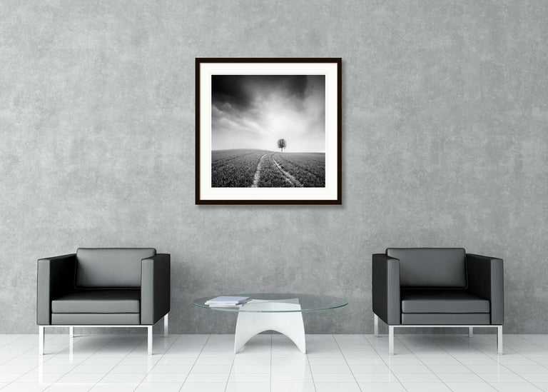 Farmland Study #3, Austria - Black and White fine art long exposure photography For Sale 1