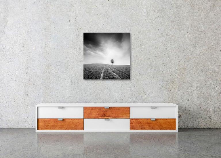 Farmland Study #3, Austria - Black and White fine art long exposure photography For Sale 2