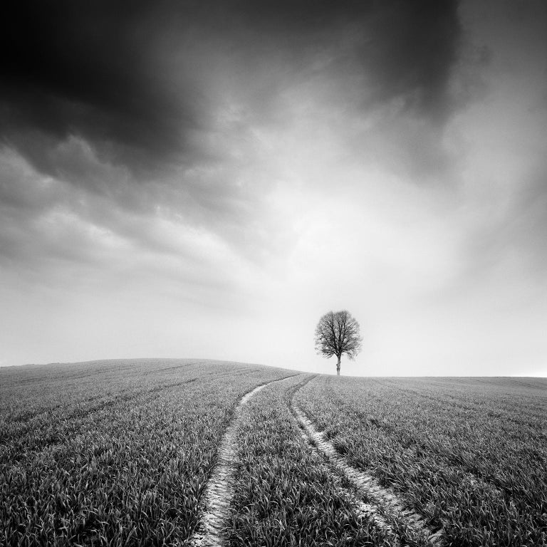 Gerald Berghammer, Ina Forstinger Landscape Photograph - Farmland Study #3, Austria - Black and White fine art long exposure photography