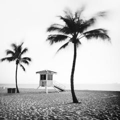 Fort Lauderdale Beach, Florida, USA, B&W art prints, landscapes, palm trees
