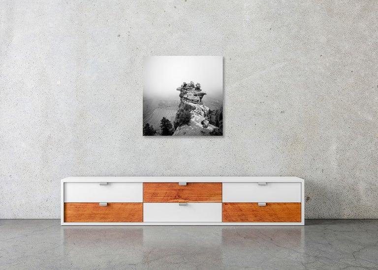 Grand Canyon Study 1, Arizona, USA - Black and White fine art film photography For Sale 2