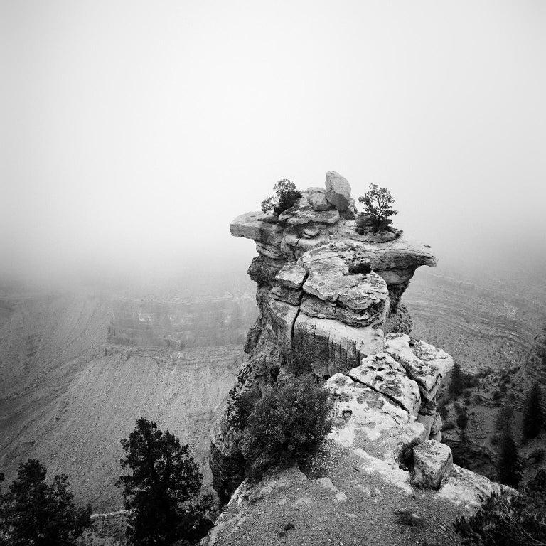 Gerald Berghammer, Ina Forstinger Landscape Photograph - Grand Canyon Study 1, Arizona, USA - Black and White fine art film photography