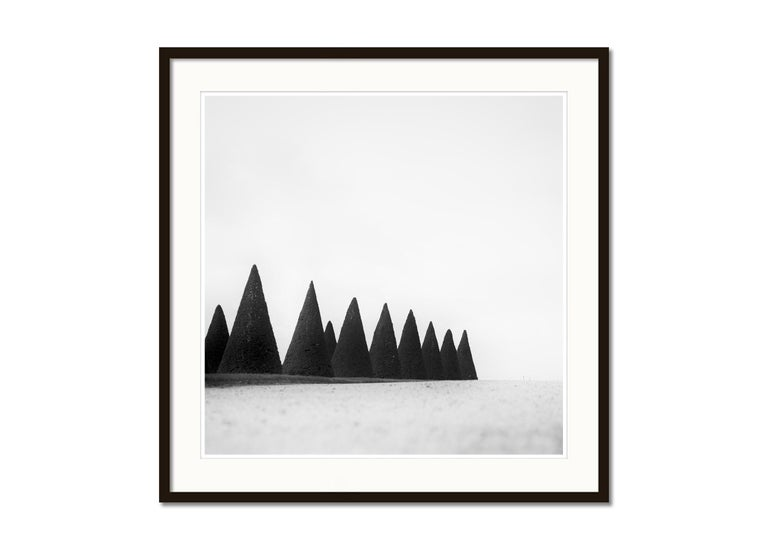 Hedges, Paris, Versailles, Yvelines, black and white art photography, landscapes - Gray Landscape Photograph by Gerald Berghammer, Ina Forstinger