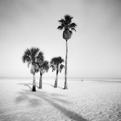 Palm Beach, Florida, USA, fine art black and white photography, landscapes