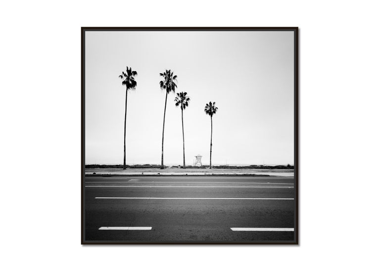 Palm Tree, Beach, Santa Barbara, USA, black and white photography, landscapes - Photograph by Gerald Berghammer, Ina Forstinger