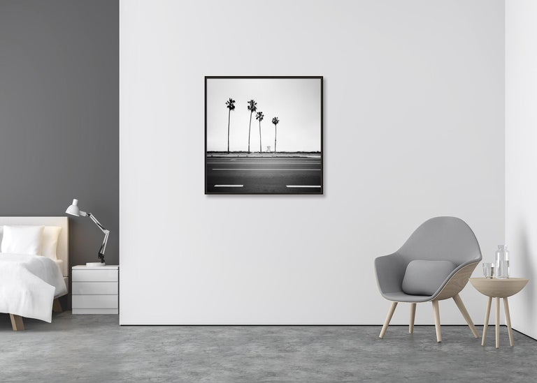 Palm Tree, Beach, Santa Barbara, USA, black and white photography, landscapes - Contemporary Photograph by Gerald Berghammer, Ina Forstinger