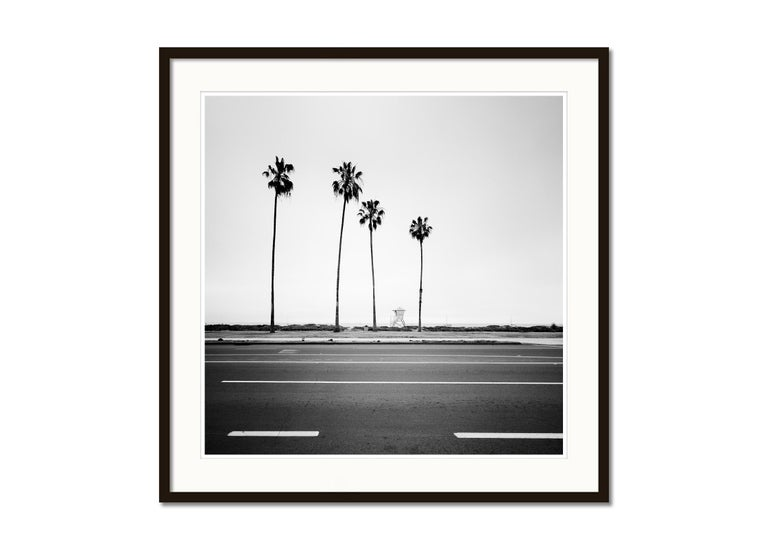 Palm Tree, Beach, Santa Barbara, USA, black and white photography, landscapes - Gray Black and White Photograph by Gerald Berghammer, Ina Forstinger