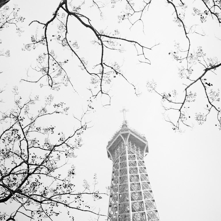 Tree and the Tower, Paris, France - Black and White cityscapes film photography - Photograph by Gerald Berghammer, Ina Forstinger