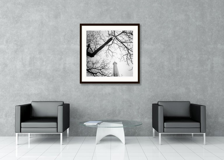 Tree and the Tower, Paris, France - Black and White cityscapes film photography For Sale 1