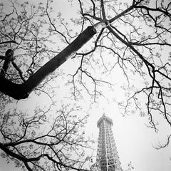 Tree and the Tower, Paris, France, black and white art photography, landscape