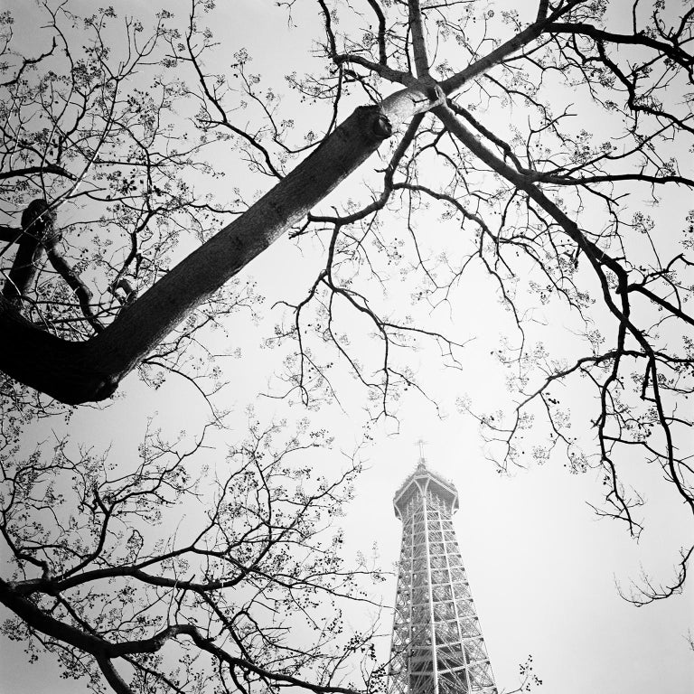 Gerald Berghammer, Ina Forstinger Landscape Photograph - Tree and the Tower, Paris, France - Black and White cityscapes film photography