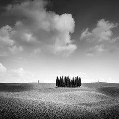 Cypress Hill, Tuscany, Italy, minimalist black and white photograhy, landscape