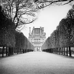 Pavillon de Flore, Paris, France, black and white art photography, cityscape