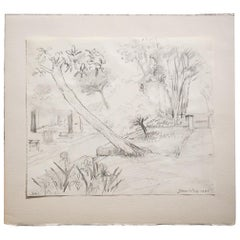 Gerard Diaz Last 20th Century Rectangular White French Iris Pencil Drawing, 1998