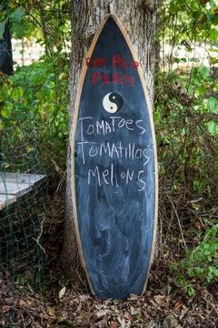 Fireplace Farm:  Springs, East Hampton