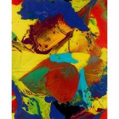 Gerhard Richter P10 Bagdad Print - Limited Edition