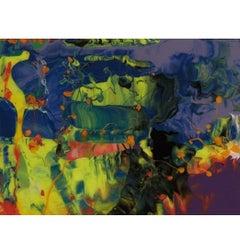 Gerhard Richter P11 Aladin Print - Limited Edition