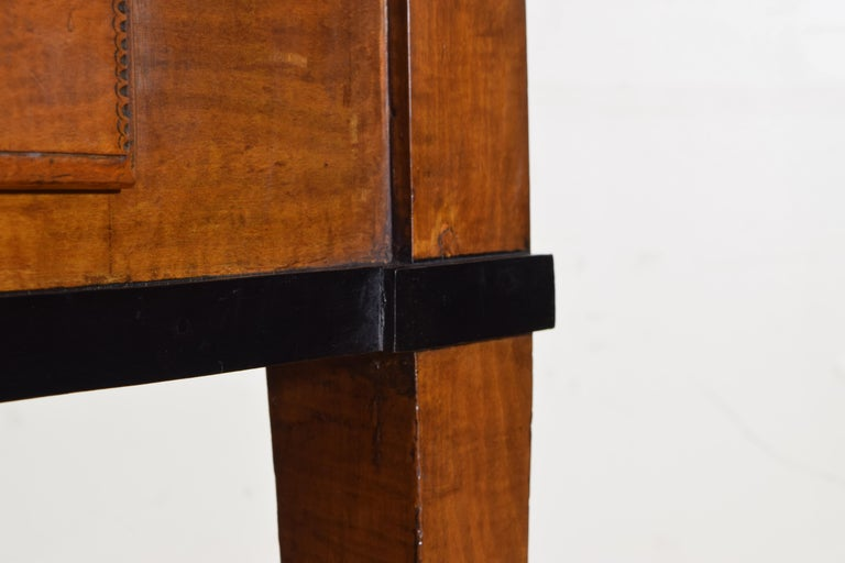 German Biedermeier Period Cherrywood and Ebonized Library Table, circa 1835 For Sale 3