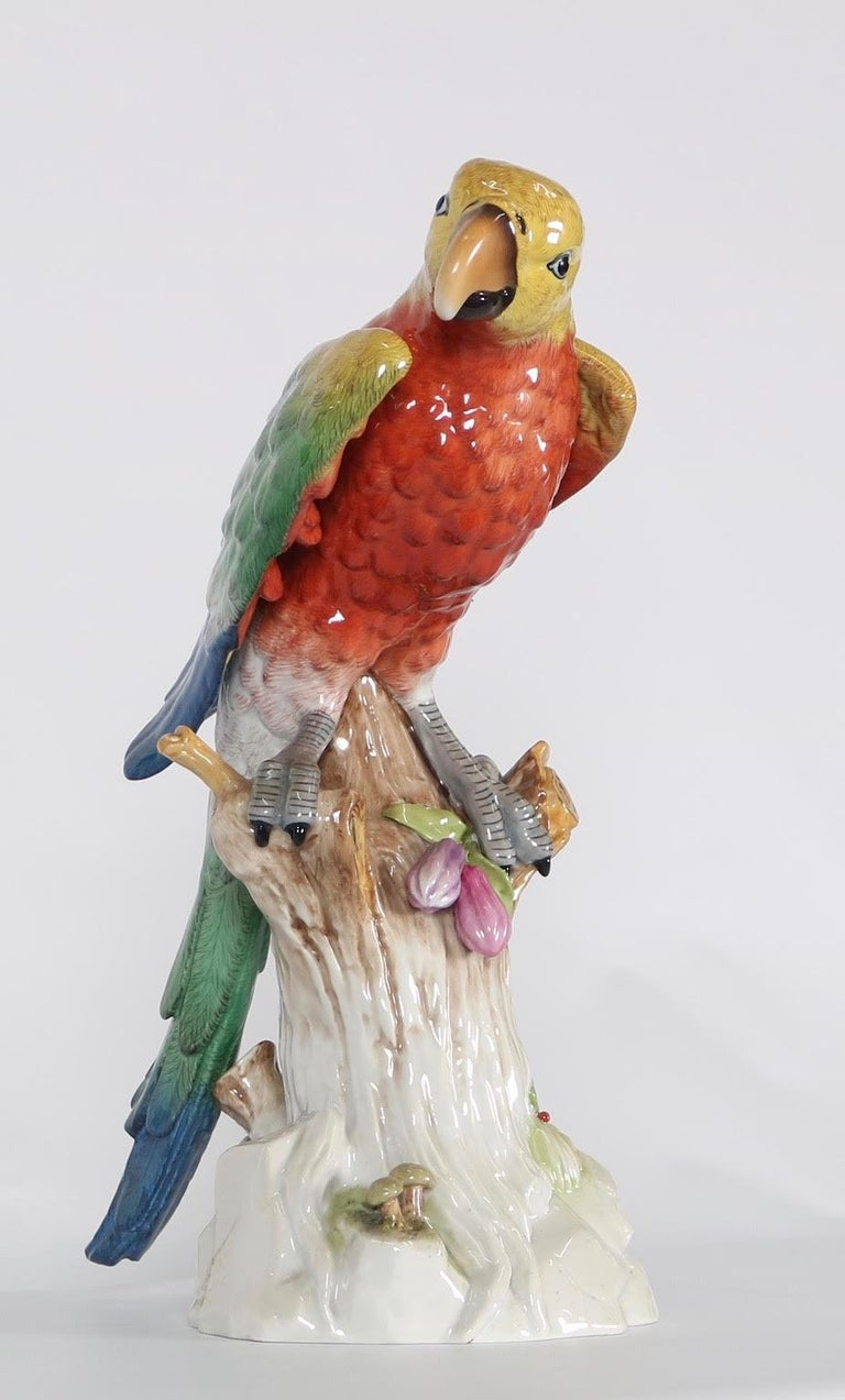 German Meissen Style Porcelain Macaw Parrot Figurine In Excellent Condition For Sale In New York, NY