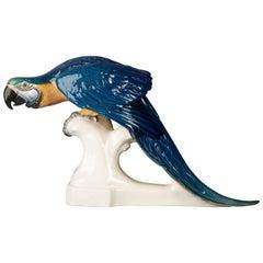 German Porcelain Parrot, Nymphenburg, circa 1900